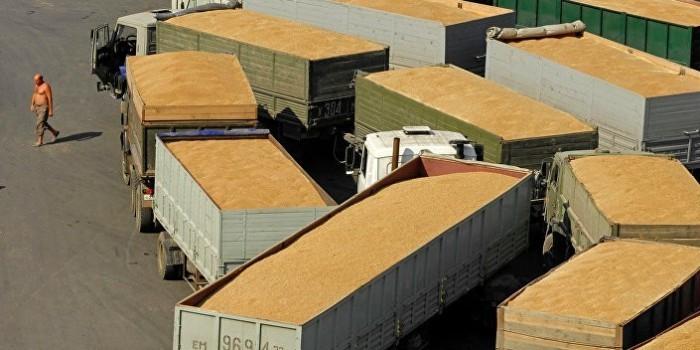 США ожидают мирового лидерства России по экспорту пшеницы