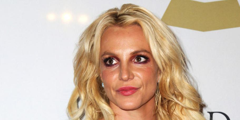 Бритни Спирс обвинили в нападении на домработницу из-за собаки, ведется расследование