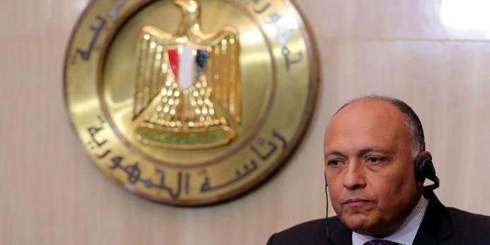 Египет поддержал операцию ВКС России в Сирии