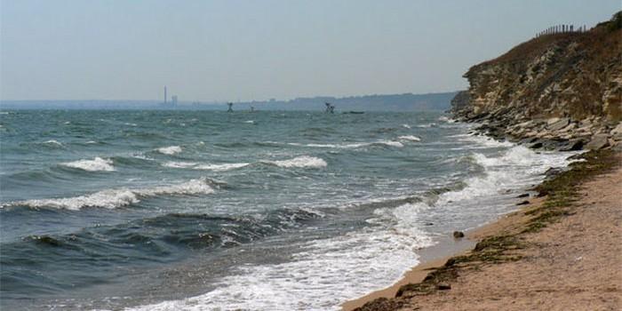 Туристы в Крыму боятся плавать в усеянном калом море