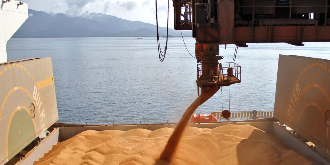 Экспорт российского зерна достиг рекордных значений