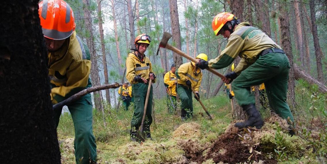 Единая Россия усиливает систему лесоохраны