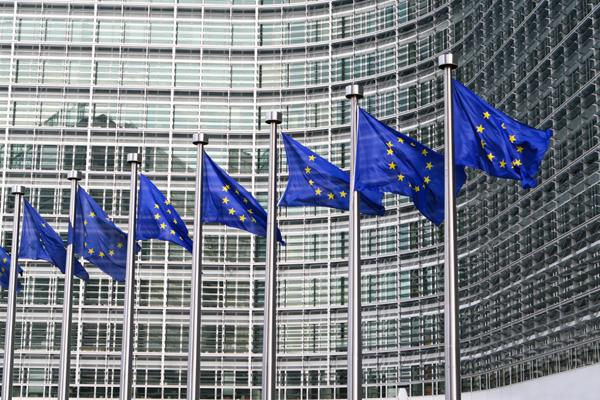 Брюссель не рассматривает Украину в составе ЕС