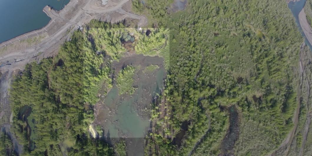 """СМИ: """"Норникель"""" сливал отходы в реку не менее 8 дней"""