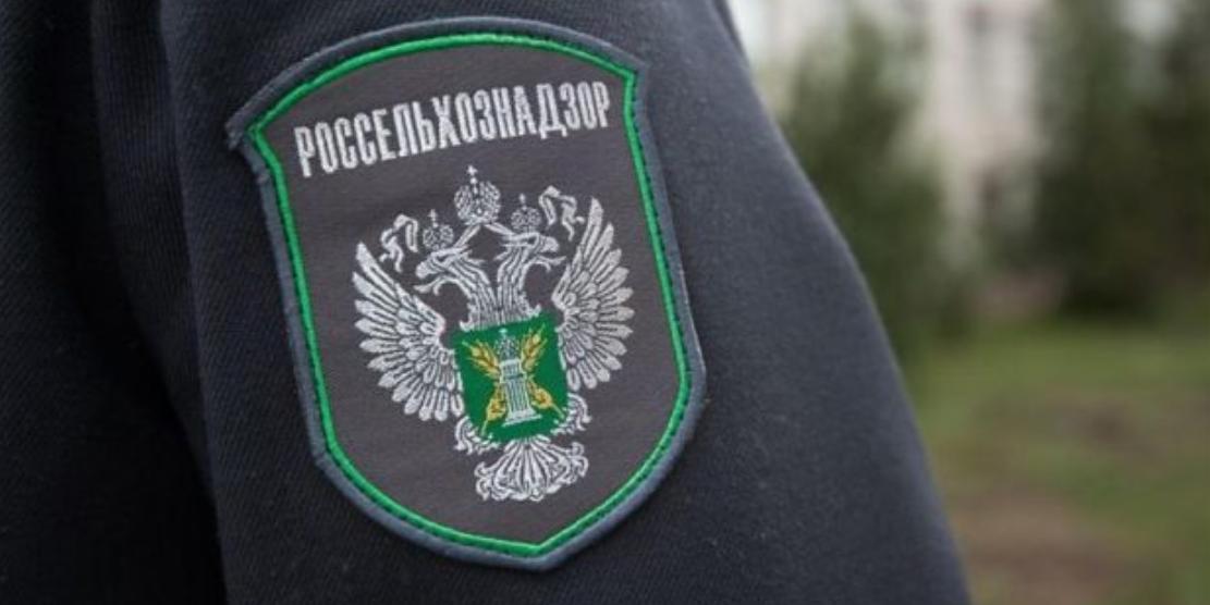 Россия запретила транзит украинского скота по своей территории