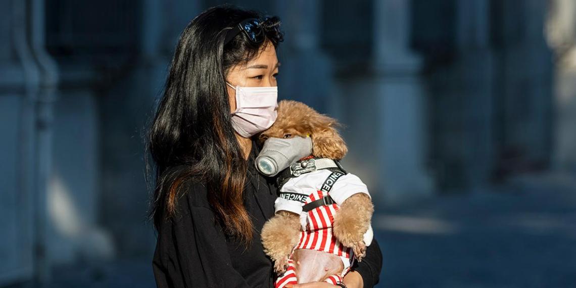 Разработанную в США вакцину от нового коронавируса протестируют на людях