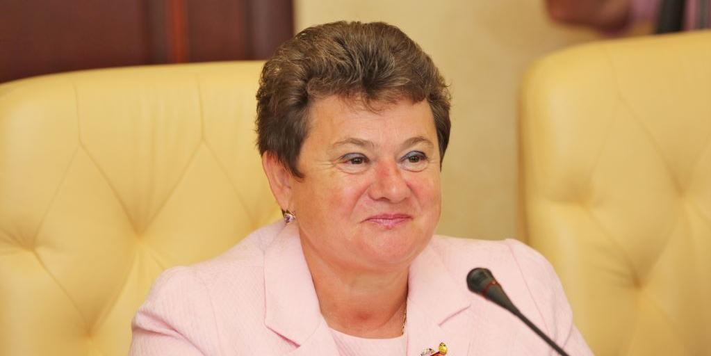 Губернатору Владимирской области не понравилась грязь в Париже