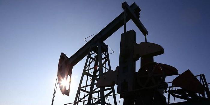 СМИ узнали об ограничении поставок российской нефти в Белоруссию