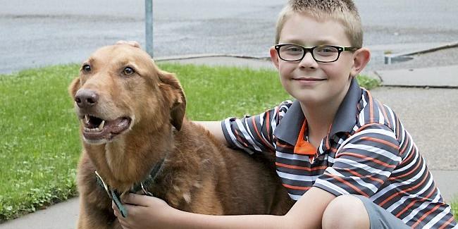 Школьник из США пожертвовал свои накопления на бронежилеты для собак