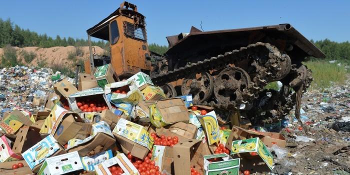 Глава калининградской таможни объяснил уничтожение контрабандной еды богатством России