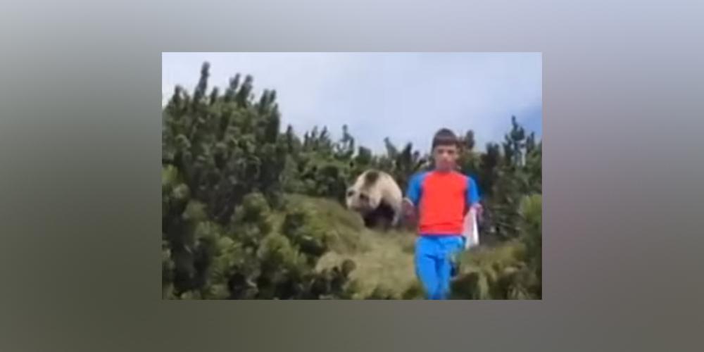 В Италии родители засняли, как 12-летний сын уходит от медведя