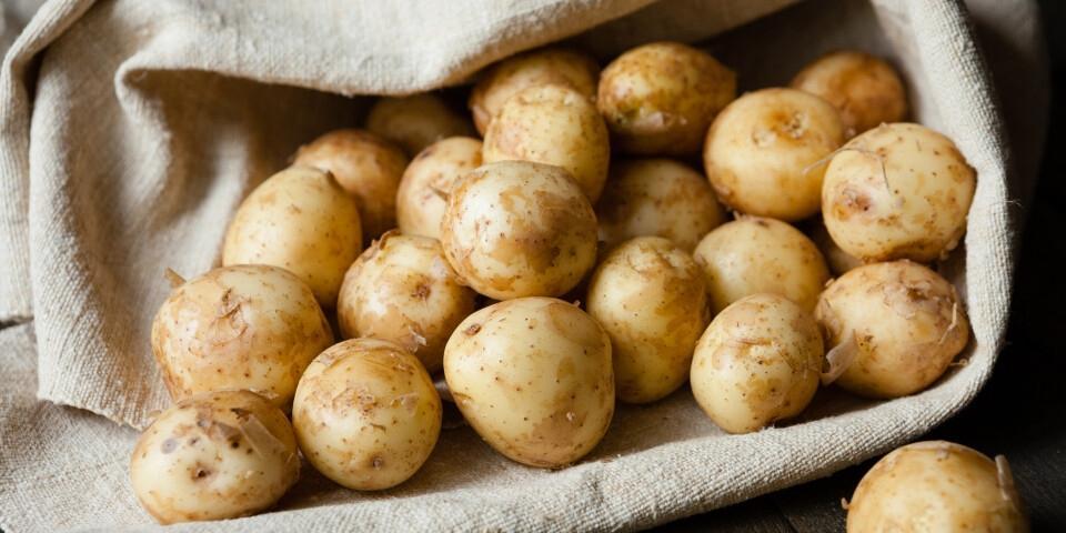 Производители хотят продавать картошку класса эконом
