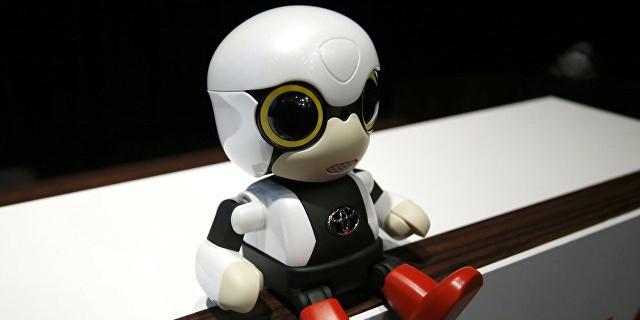 В Японии бездетным женщинам предложили усыновлять роботов
