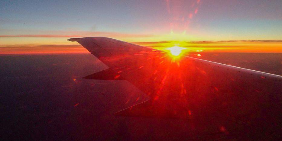 """""""Аэрофлот"""" начал массово отменять первые рейсы за границу"""