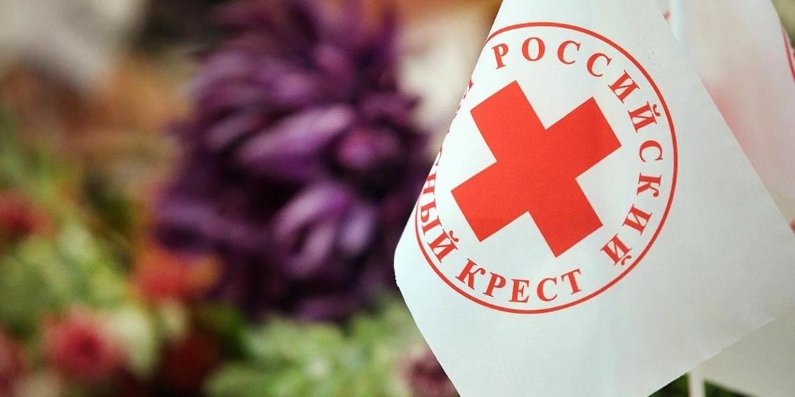 Российский Красный Крест подвел итоги работы в пандемию