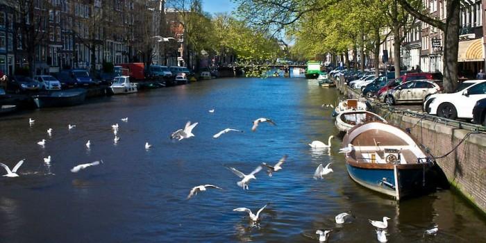 В Амстердаме роботы построят мост с помощью 3D принтера