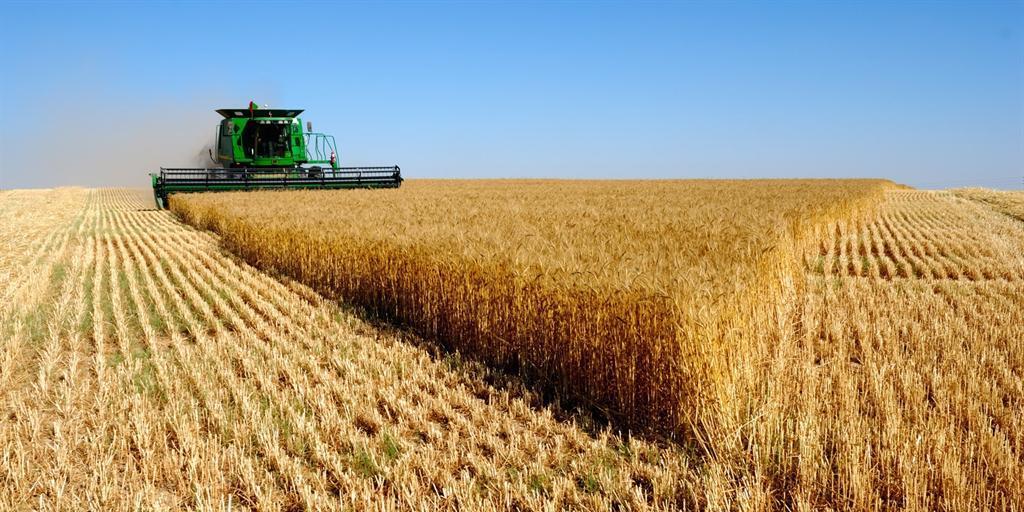 Узбекистан захотел использовать российскую землю для своих сельхознужд