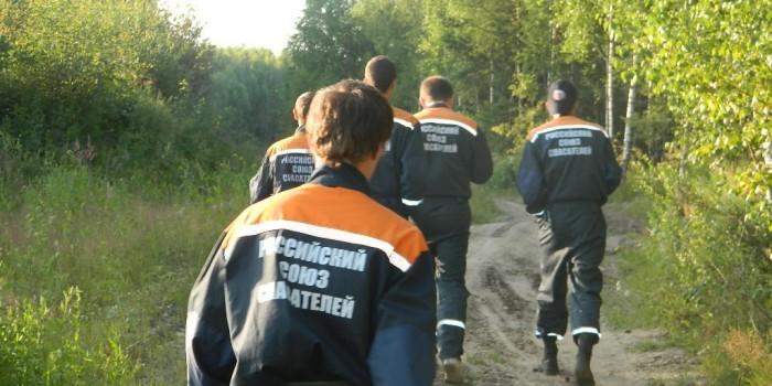 """Хабаровские спасатели """"отбили"""" мужчину у осиного роя"""