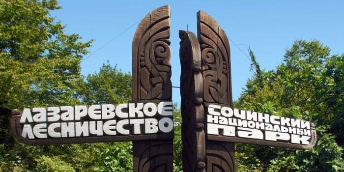 Племянницу Рогозина назначили директором нацпарка в Сочи