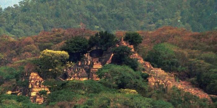 Школьник обнаружил в джунглях затерянный город майя