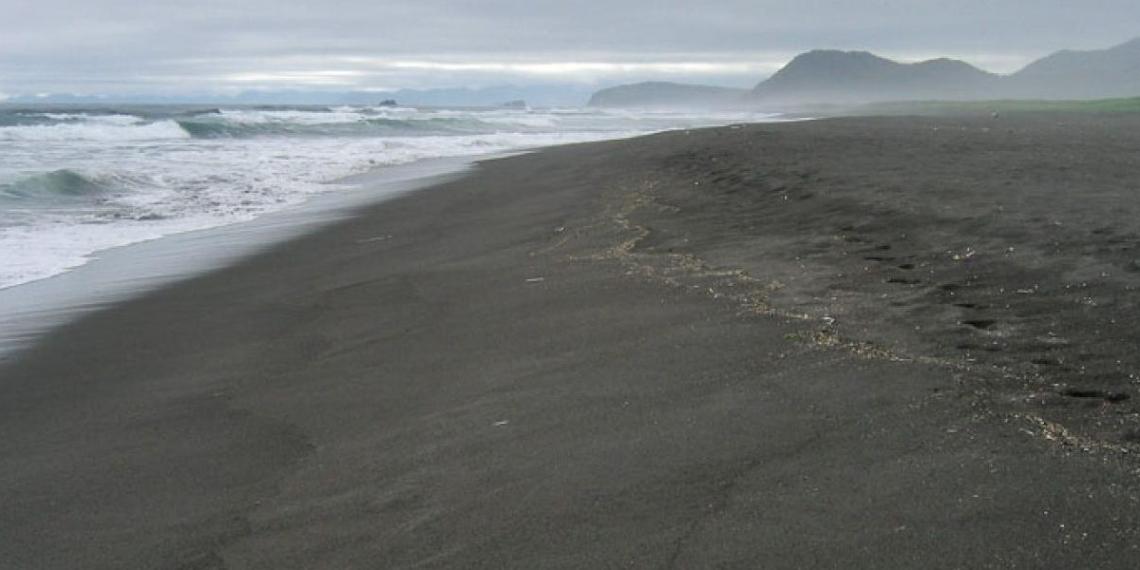 Пробы воздуха на территории Халактырского пляжа возьмет мобильная передвижная лаборатория