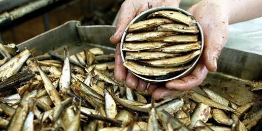 Россия запрещает прибалтийскую рыбную продукцию