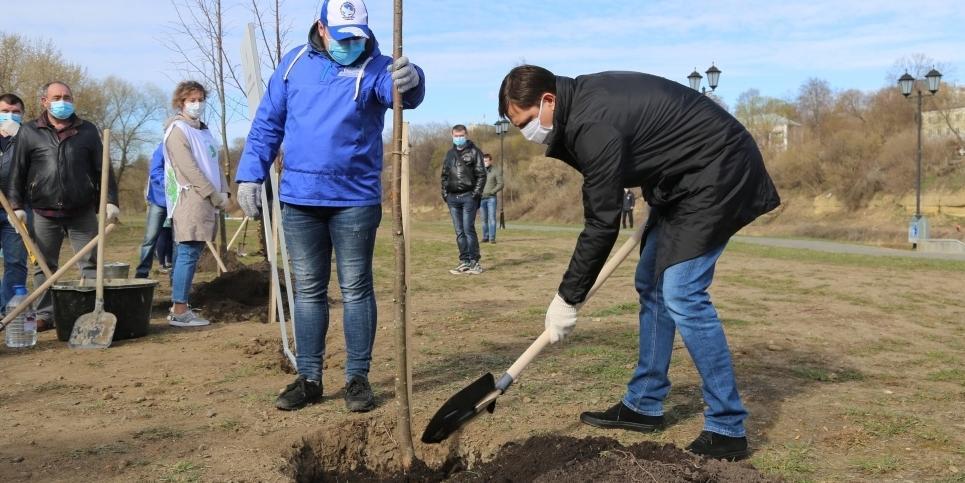 """Путин назвал блестящей идею """"Волонтеров Победы"""" высадить 27 млн деревьев в честь павших в Великой Отечественной войне"""