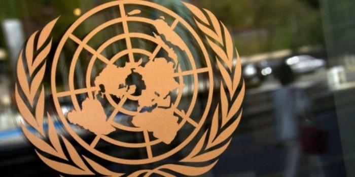 """Турция поддержала в ООН признание России """"оккупантом"""""""
