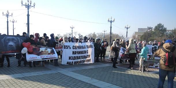 Жители Хабаровска потребовали реального наказания девушкам-живодеркам
