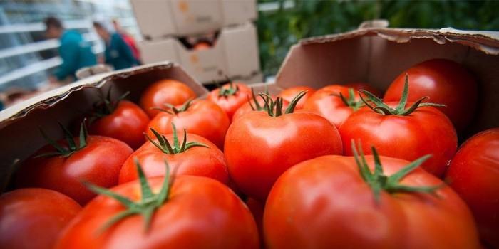 Турция пригрозила России ответными мерами из-за томатов
