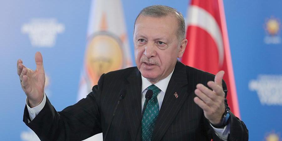 """Эрдоган захотел мобилизовать весь мир против """"террора"""" Израиля"""