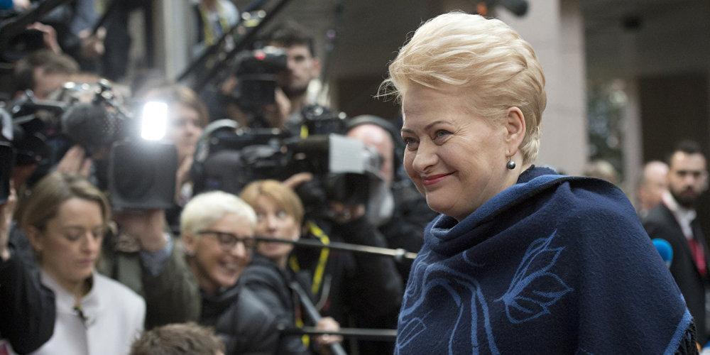 Президента Литвы не пригласили на инаугурацию Путина