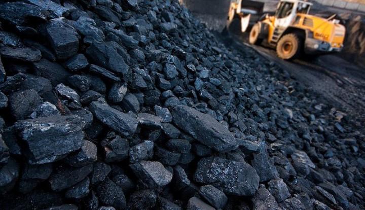 Нестор Шуфрич: Власть скрывает закупки угля из российского Кузбасса