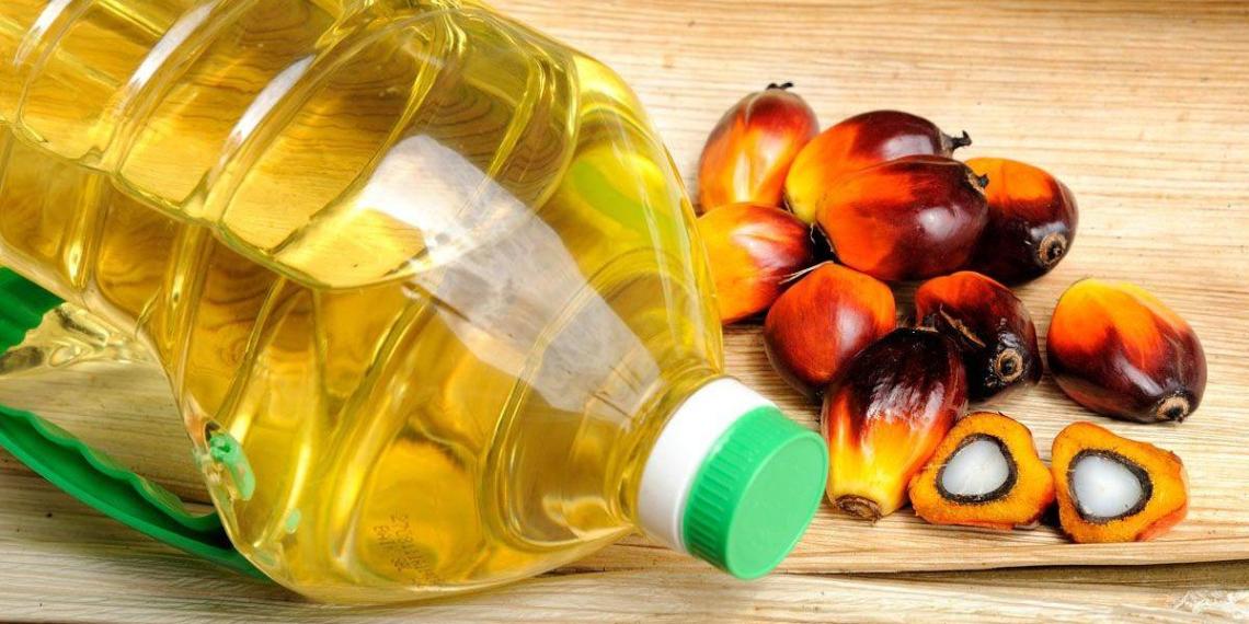 В России могут ограничить использование пальмового масла
