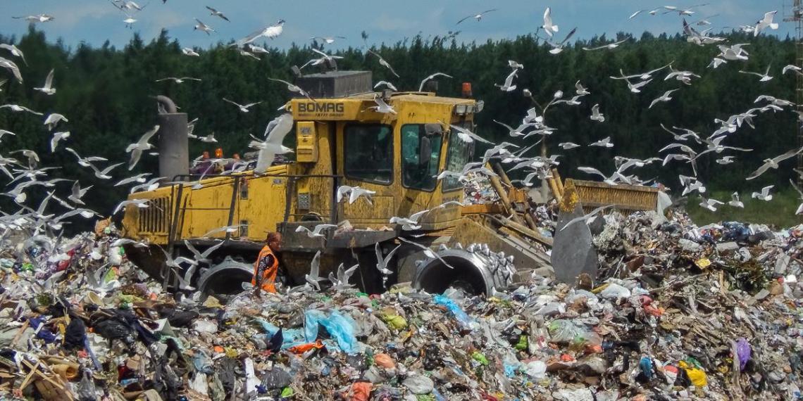 Счетная палата заявила о близкой к критической ситуации с мусором в стране