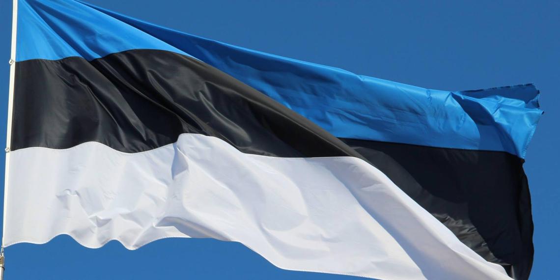 Эстония хочет возглавить ОБСЕ