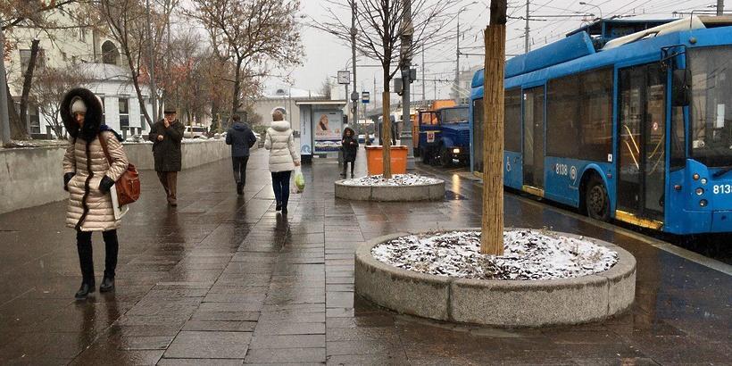 Москвичам спрогнозировали повторение теплой зимы только через 20-30 лет