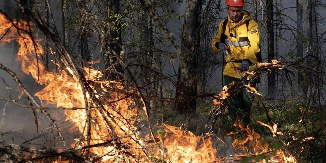 Активисты единого волонтерского штаба решили помочь в восстановлении жилья и лесов в Якутии