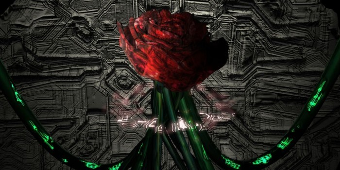 Шведские ученые превратили живую розу в киборга