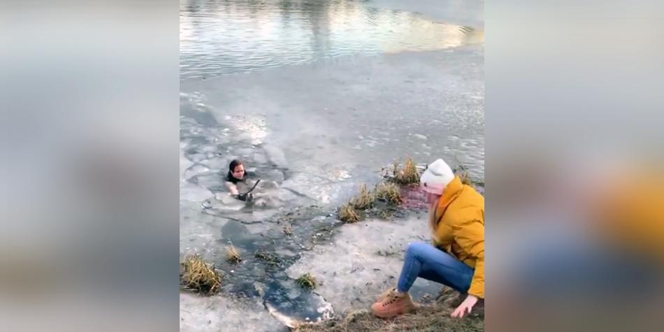 В Мытищах мать троих детей прыгнула в ледяной пруд, спасая собаку