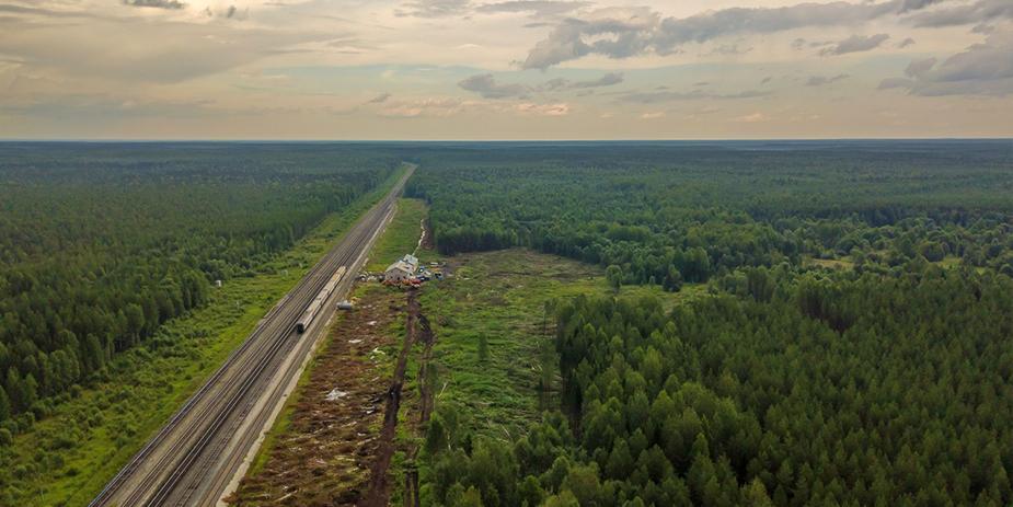 Архангельская область отказалась от поддержки мусорного полигона на станции Шиес