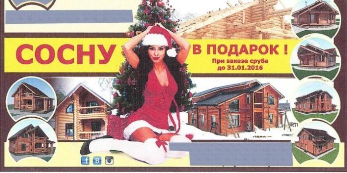 """В Новосибирске проверят на непристойность слоган """"Сосну в подарок"""""""