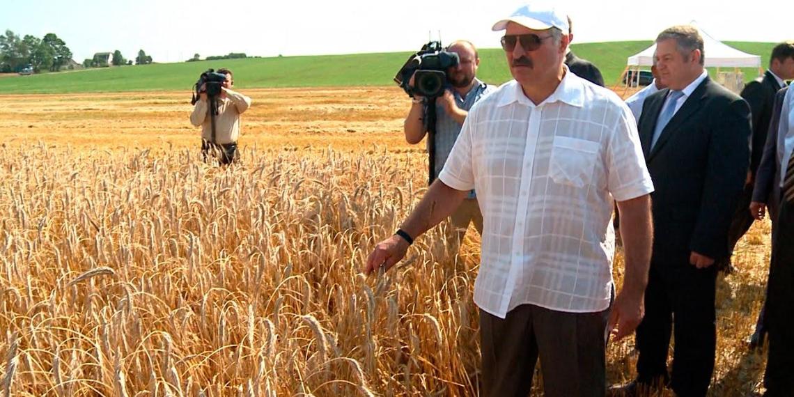Ни жилья, ни машин: опубликована декларация о доходах Лукашенко