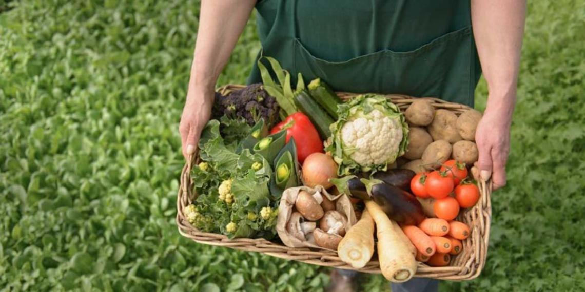 Фермерам разрешат продавать овощи и фрукты на своих участках
