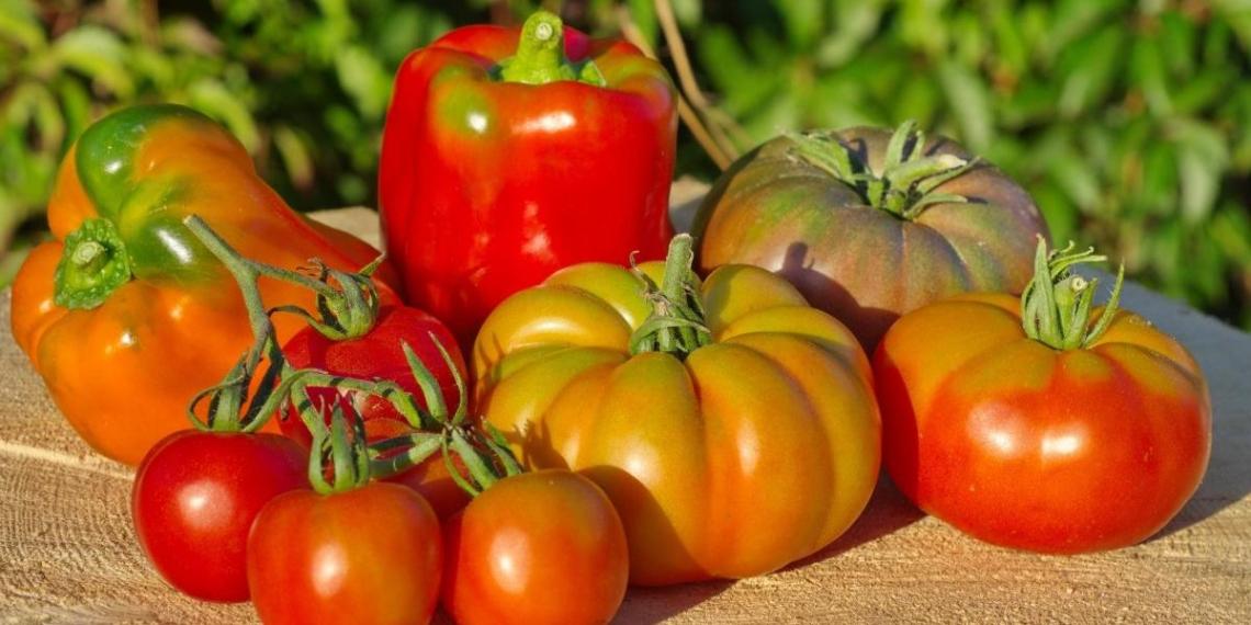 Россельхознадзор запретил ввоз томатов и перцев из Армении
