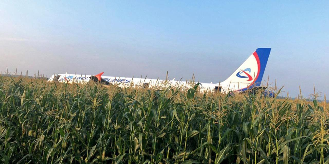 Появилось видео посадки самолета Airbus A321 в подмосковном поле