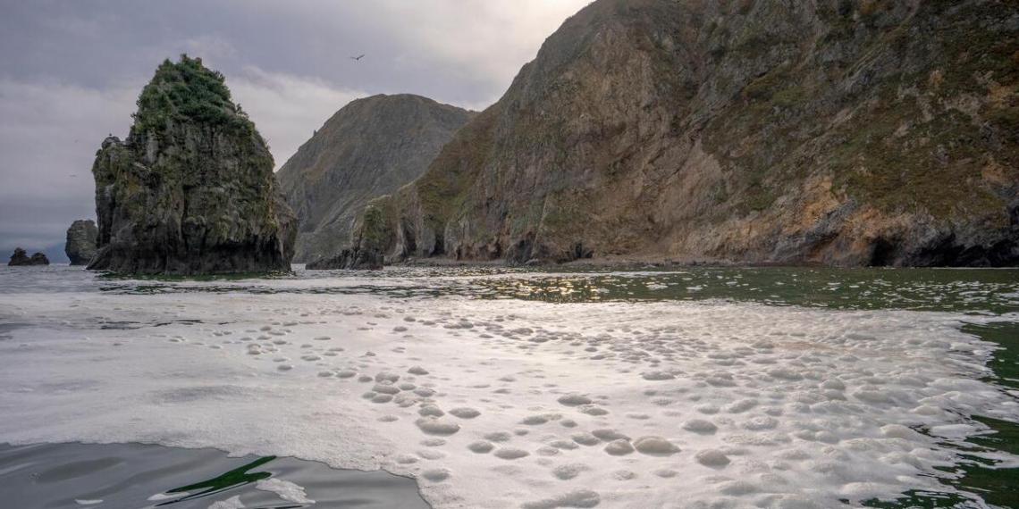 Названа основная версия загрязнения воды на Камчатке