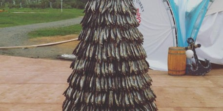 Во Владивостоке установили 2,5-метровую елку из сушеной корюшки