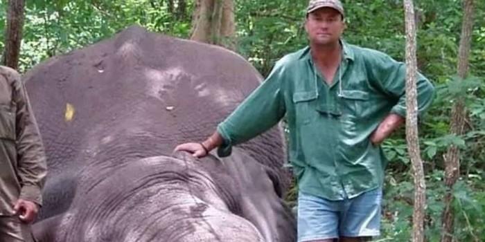 Охотника на редких животных насмерть задавил подстреленный им слон