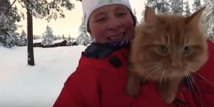 Лыжница из Норвегии превратила своего кота в ездового